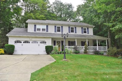 18185 Rolling Brook Dr, Chagrin Falls, OH 44023 - MLS#: 3968363