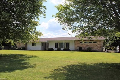 941 Youngstown Kingsville Rd SOUTHEAST, Vienna, OH 44473 - MLS#: 3968781