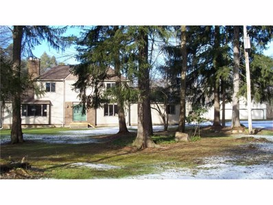 15890 Irontree Trl, Newbury, OH 44065 - MLS#: 3968927