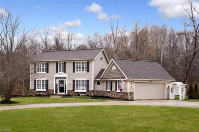 18265 Rolling Brook Dr, Chagrin Falls, OH 44023 - MLS#: 3969394