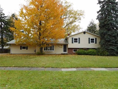 3643 Lakeview Blvd, Stow, OH 44224 - MLS#: 3969499