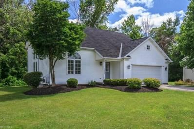 9834 Johnnycake Ridge Rd, Concord, OH 44060 - MLS#: 3969784