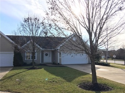 883 Stonewater Dr, Kent, OH 44240 - MLS#: 3970439