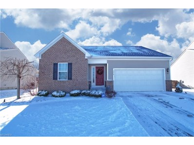 426 Greenfield Ln, Painesville Township, OH 44077 - MLS#: 3970442