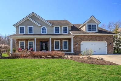 12170 Summerwood Dr, Concord, OH 44077 - MLS#: 3970473
