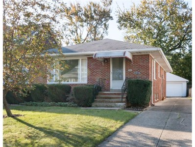18116 Landseer Rd, Cleveland, OH 44119 - MLS#: 3970551