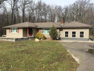 4666 Oak St, Lowellville, OH 44436 - MLS#: 3970614