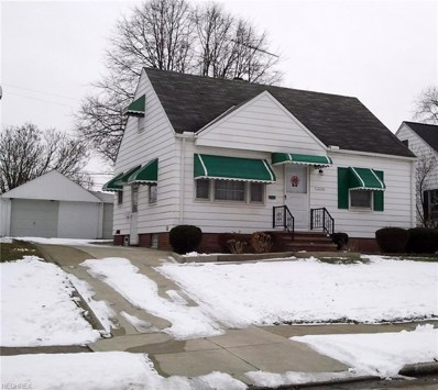 11120 Mountview Ave, Garfield Heights, OH 44125 - MLS#: 3970897