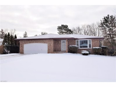 9897 Hawley Dr, North Royalton, OH 44133 - MLS#: 3971101