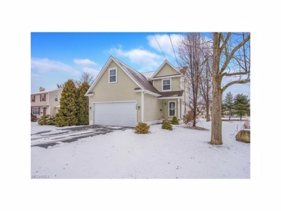 145 Hood Dr, Canfield, OH 44406 - MLS#: 3971191