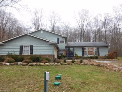 104 Maple Hill Dr, South Russell, OH 44022 - MLS#: 3971338