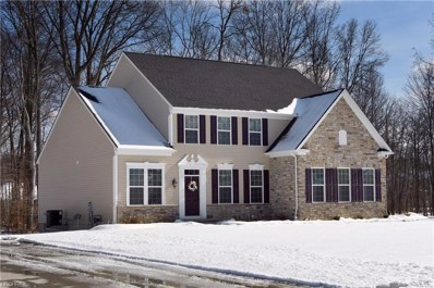 2711 Palmer Ln, Avon, OH 44011 - MLS#: 3971811