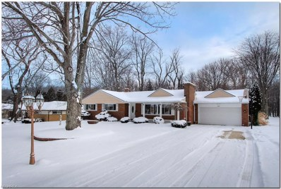 8285 Overlook Ave, Broadview Heights, OH 44147 - MLS#: 3971866