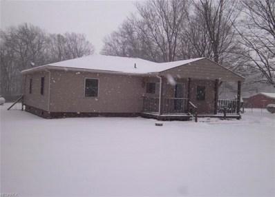13220 Collins Rd, Berlin Heights, OH 44814 - MLS#: 3972200