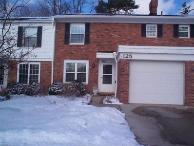 125 Chatham Way UNIT 125B, Mayfield Heights, OH 44124 - MLS#: 3972245