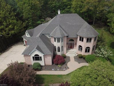 60 Beech Cliff Dr, Amherst, OH 44001 - MLS#: 3972390