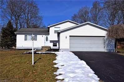 6932 Slippery Rock Dr, Canfield, OH 44406 - MLS#: 3972796