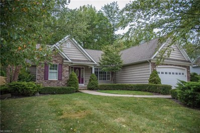 12254 Summerwood Dr, Concord, OH 44077 - MLS#: 3972807