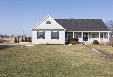 6305 Hunter Pl, Rootstown, OH 44272 - MLS#: 3972849