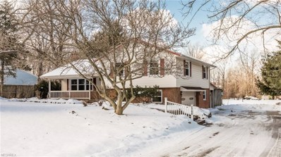 2766 Oak St, Willoughby Hills, OH 44094 - MLS#: 3972956