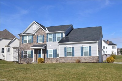 973 Mimosa Dr, Macedonia, OH 44056 - MLS#: 3972982