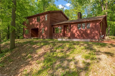 3835 S Turner Rd, Canfield, OH 44406 - MLS#: 3973099