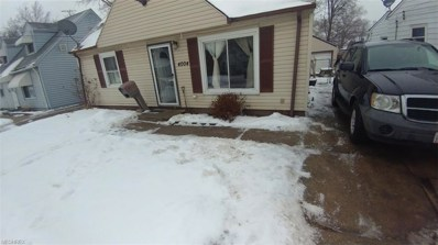 4004 Victory Blvd, Cleveland, OH 44135 - MLS#: 3973365