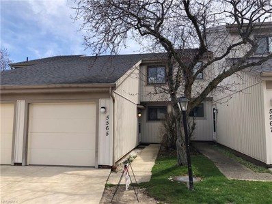 5565 Treetop Ct UNIT 132, Parma, OH 44134 - MLS#: 3973652
