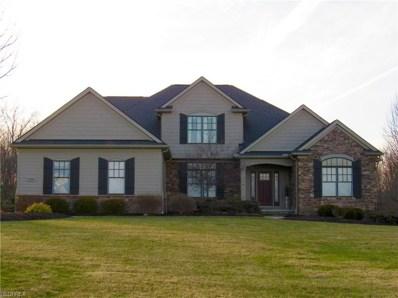 3308 Prairie Vista Ct, Richfield, OH 44286 - MLS#: 3974139