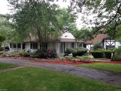 17710 Westview Dr, Chagrin Falls, OH 44023 - MLS#: 3974608