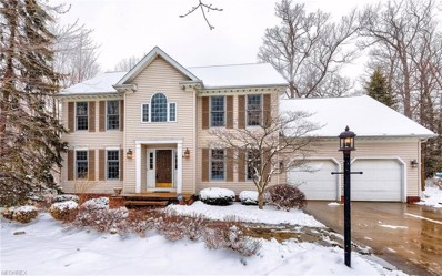 10065 Stone Hollow Rd, Mentor, OH 44060 - MLS#: 3974898