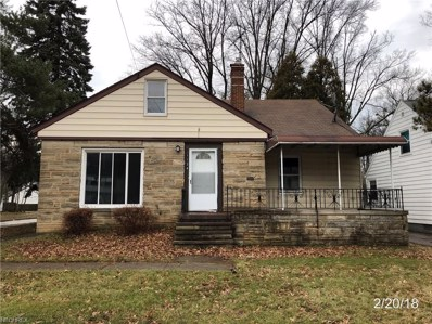 1124 S Green Rd, South Euclid, OH 44121 - MLS#: 3975042