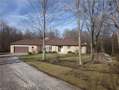 8621 Cable Line Rd, Ravenna, OH 44266 - MLS#: 3975183