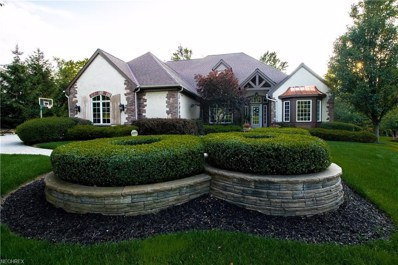 10564 Oakmont Way, Concord, OH 44077 - MLS#: 3975442
