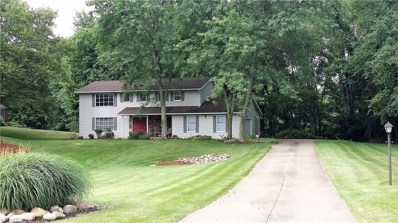 4221 Big Spruce Dr, Akron, OH 44333 - MLS#: 3975524