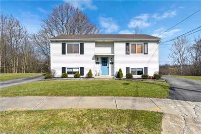 757 Rhoda Ave, Youngstown, OH 44511 - MLS#: 3975651
