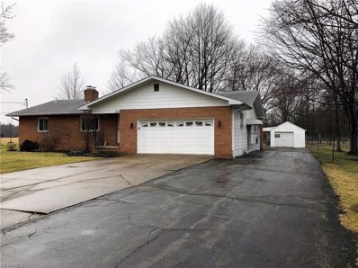 3749 Durst Clagg Rd, Cortland, OH 44410 - MLS#: 3975706