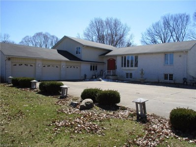 405 Oaknoll Dr, Amherst, OH 44001 - MLS#: 3975797