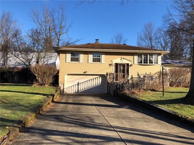 3411 Warwick Ct, Canfield, OH 44406 - MLS#: 3975933