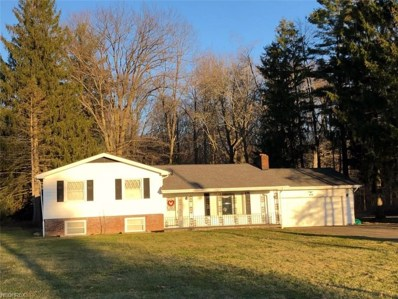 315 Bedford Rd, Lowellville, OH 44436 - MLS#: 3976115