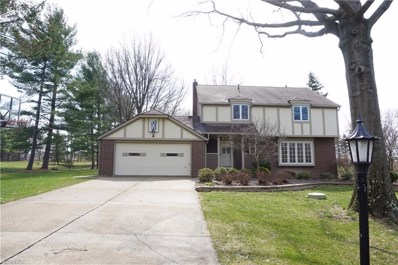 3223 Country Club Dr, Medina, OH 44256 - MLS#: 3976971