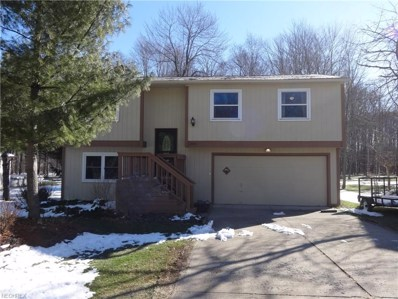 11143 Heritage Dr, Twinsburg, OH 44087 - MLS#: 3977341