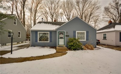 3890 W 226th St, Fairview Park, OH 44126 - MLS#: 3977349