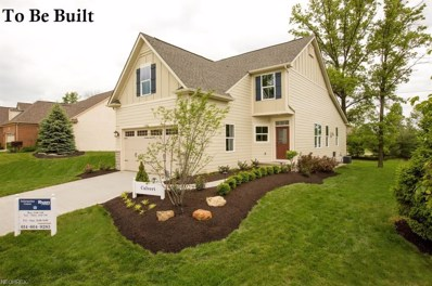 Old Mill, Cuyahoga Falls, OH 44223 - MLS#: 3977360