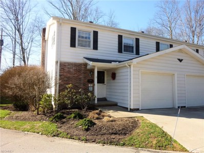 38 E Carriage Dr UNIT 38, Chagrin Falls, OH 44022 - MLS#: 3977362