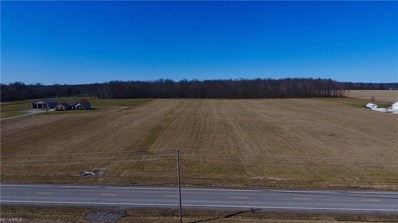 S. Salem Warren, North Jackson, OH 44451 - MLS#: 3977593