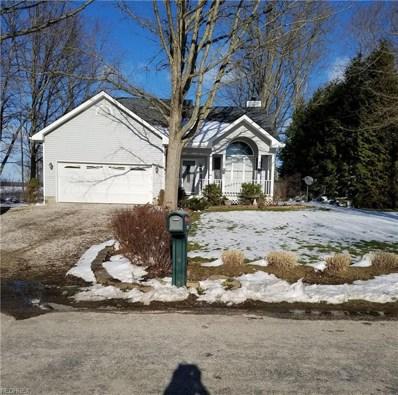 1355 Lake Vue Dr, Roaming Shores, OH 44085 - MLS#: 3977646