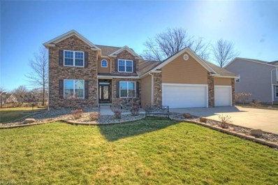 31 Woodland Run, Canfield, OH 44406 - MLS#: 3977648