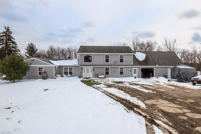 4860 River Rd, Perry, OH 44081 - MLS#: 3977748
