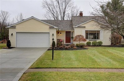 17823 Walnut Dr, Strongsville, OH 44149 - MLS#: 3977889